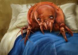 Dormiamo da soli acari prevenzione news - Acari nel letto ...